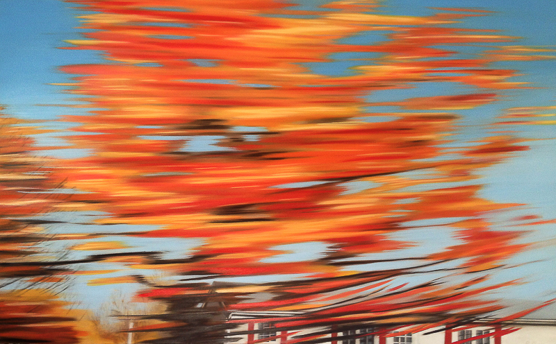 Red Tree 1 | New Brunswick | oil painting